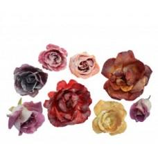 Fresh Origins Crystallized Rose Set of 10