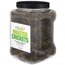 EntoVida® Edible Roasted Crickets 1lb Jar #EnViPRCrkts1lb