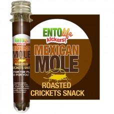 EntoVida® Mini-Kickers Mexican Mole Crickets 10gramm\100 Crickets per Tube #EL-001-00004