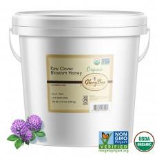 GloryBee® USA Organic Raw Clover Blossom Honey Pail, 11.67 lbs #1365916