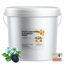 GloryBee® USA Raw Pacific Northwest Blackberry Honey, 11.67 lb. Bucket #1429278
