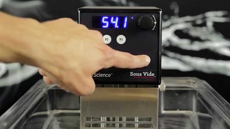 Су-вид Sous Vide Professional™ CLASSIC Series Immersion Circulator PolyScience \7306AC1B5\